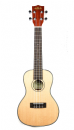 Kala KA-SCG Solid Spruce Top Gloss Finish Concert Ukulele